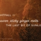 Nightfall – warm sticky ginger melts the last bit of sunlight